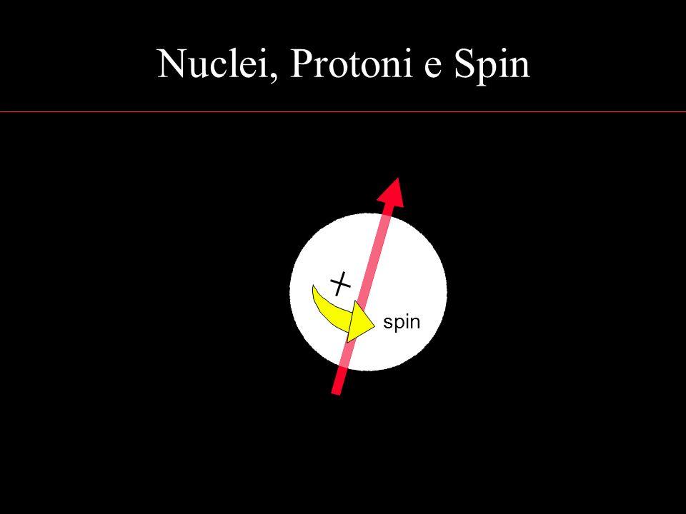 Nuclei, Protoni e Spin spin