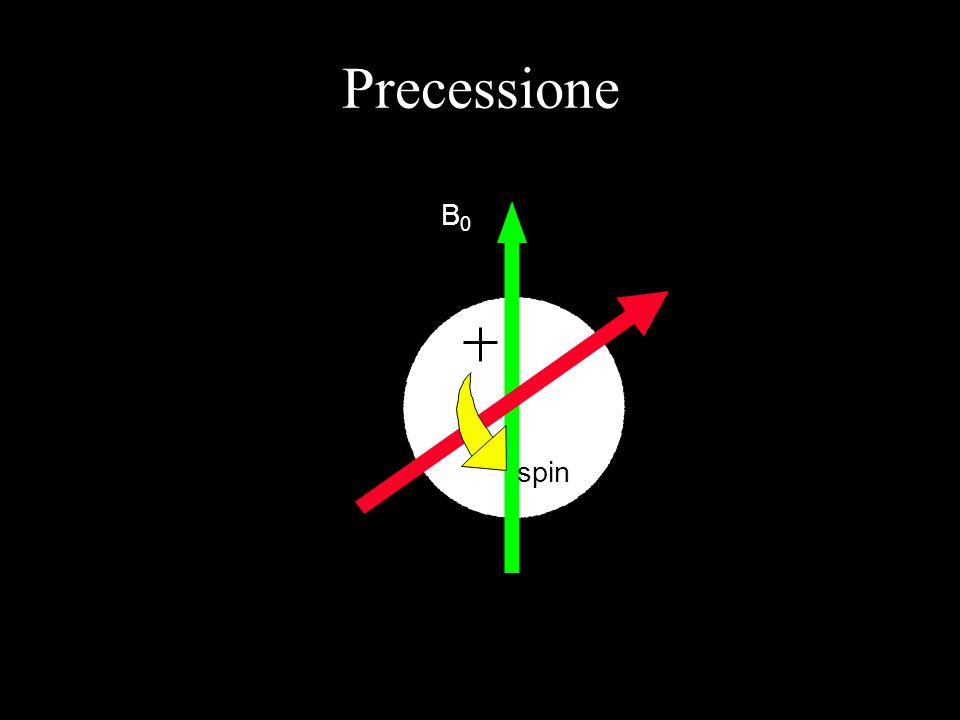 Precessione B0B0 spin