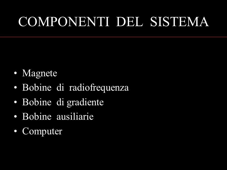 COMPONENTI DEL SISTEMA Magnete Bobine di radiofrequenza Bobine di gradiente Bobine ausiliarie Computer