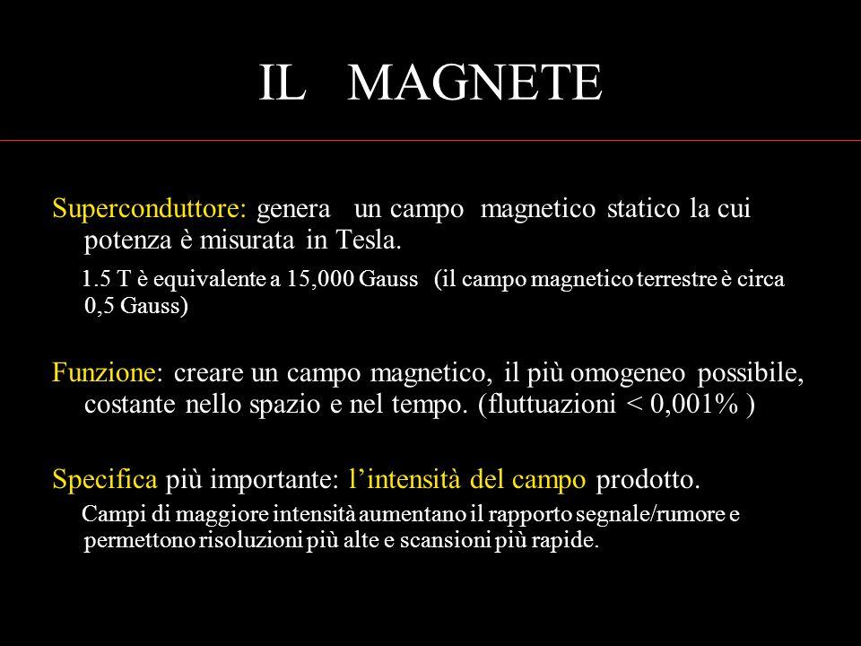 IL MAGNETE Superconduttore: genera un campo magnetico statico la cui potenza è misurata in Tesla.