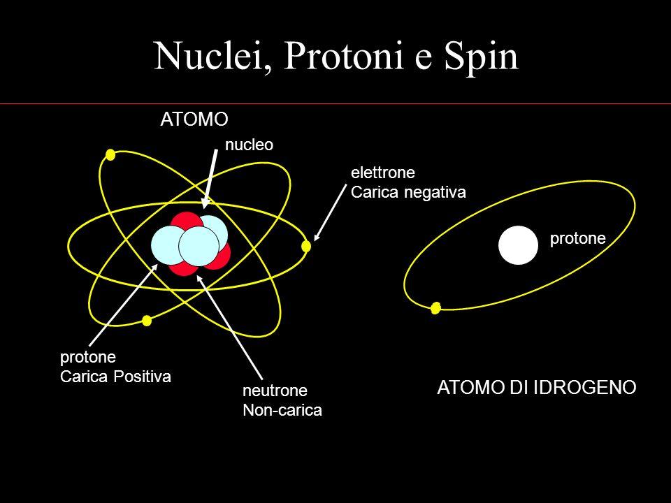 Nuclei, Protoni e Spin ATOMO Carica Positiva protone neutrone Non-carica elettrone Carica negativa nucleo ATOMO DI IDROGENO protone