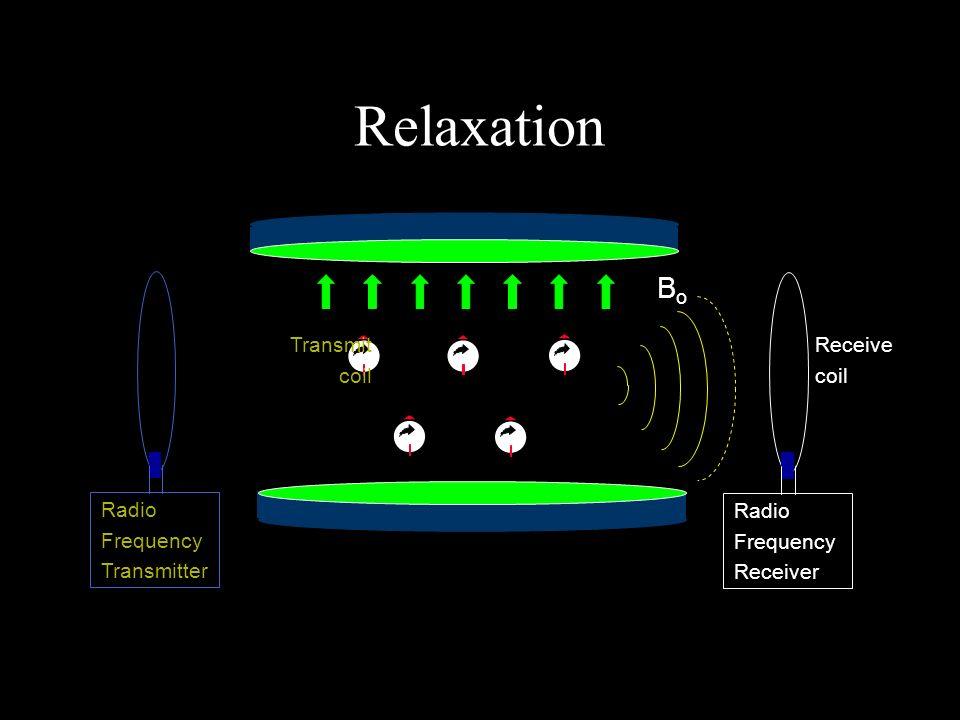 BoBo Transmit coil Radio Frequency Transmitter Receive coil Radio Frequency Receiver Relaxation