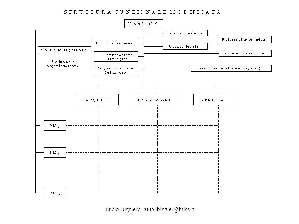 Lucio Biggiero 2005 lbiggier@luiss.it