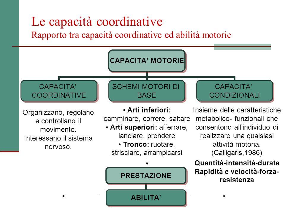 Le capacità coordinative Rapporto tra capacità coordinative ed abilità motorie CAPACITA MOTORIE CAPACITA COORDINATIVE SCHEMI MOTORI DI BASE CAPACITA C