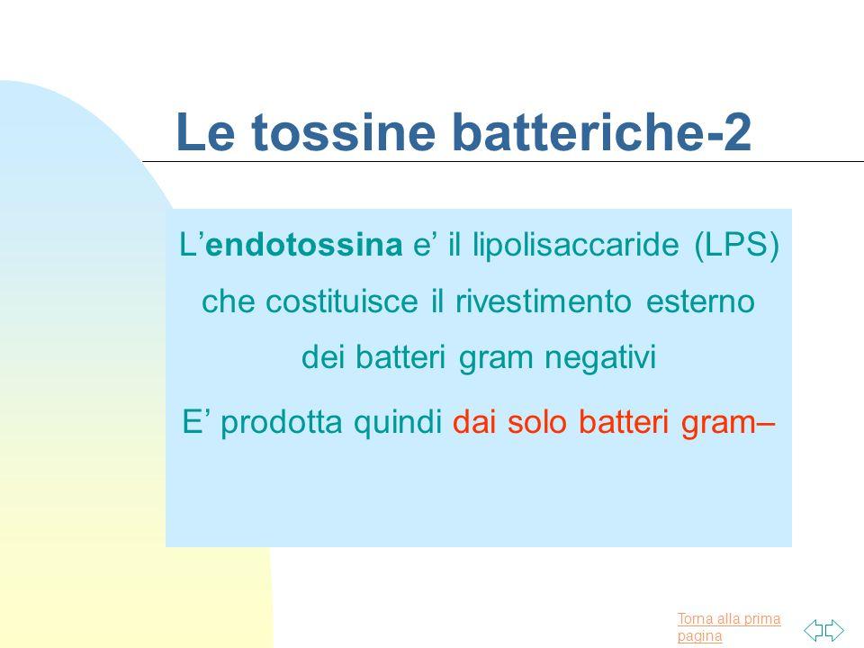Torna alla prima pagina Le tossine batteriche-2 Lendotossina e il lipolisaccaride (LPS) che costituisce il rivestimento esterno dei batteri gram negat