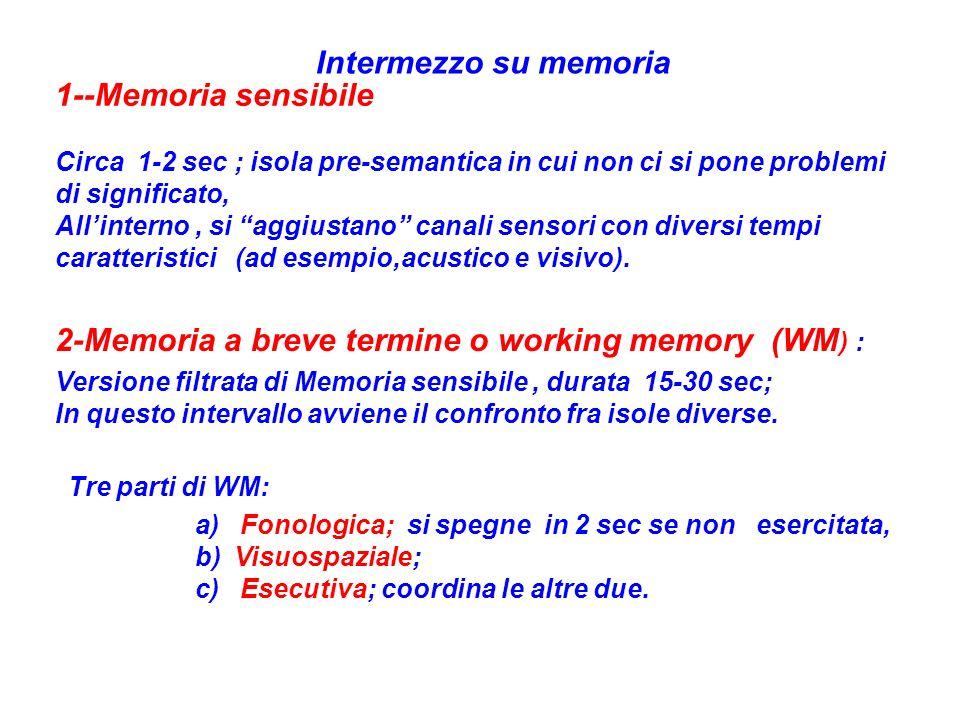 Intermezzo su memoria 1--Memoria sensibile Circa 1-2 sec ; isola pre-semantica in cui non ci si pone problemi di significato, Allinterno, si aggiustan
