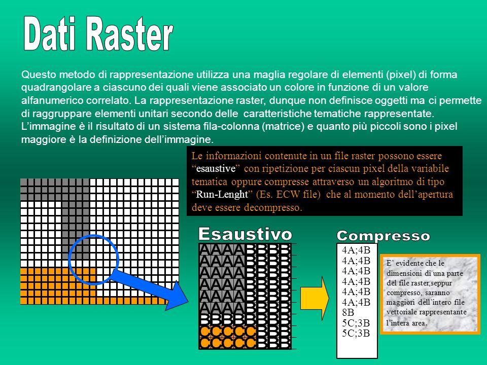 Questo metodo di rappresentazione utilizza una maglia regolare di elementi (pixel) di forma quadrangolare a ciascuno dei quali viene associato un colo