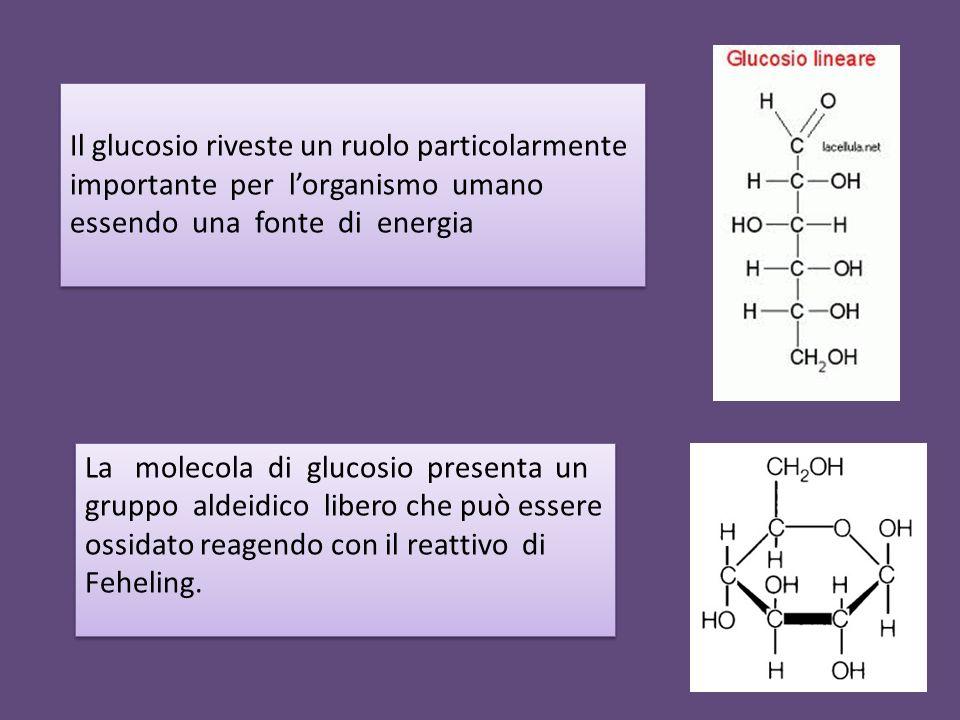 La molecola di glucosio presenta un gruppo aldeidico libero che può essere ossidato reagendo con il reattivo di Feheling. Il glucosio riveste un ruolo
