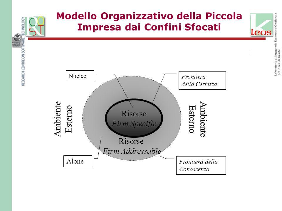 Modello Organizzativo della Piccola Impresa dai Confini Sfocati Risorse Firm Specific Risorse Firm Addressable Frontiera della Certezza Frontiera della Conoscenza Nucleo Alone Ambiente Esterno