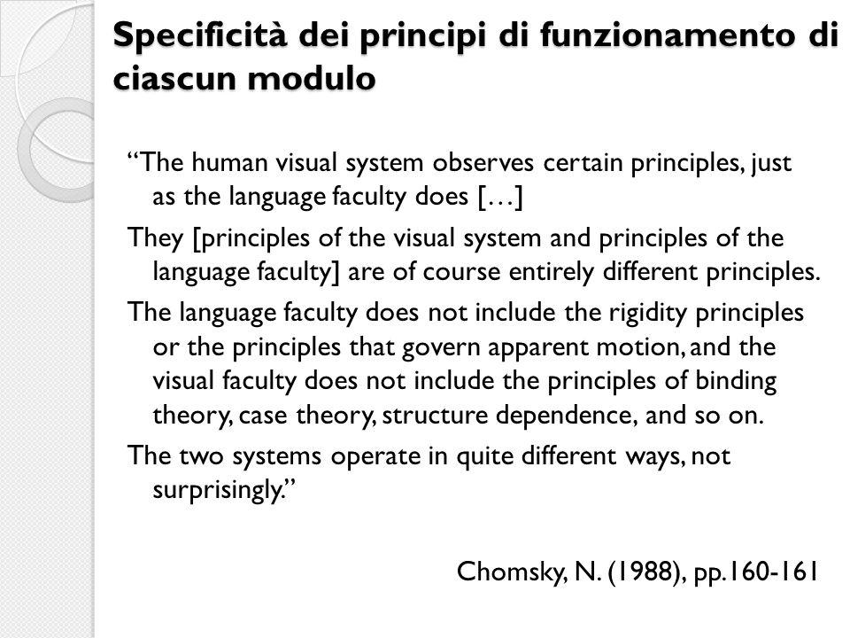 Specificità dei principi di funzionamento di ciascun modulo The human visual system observes certain principles, just as the language faculty does […]