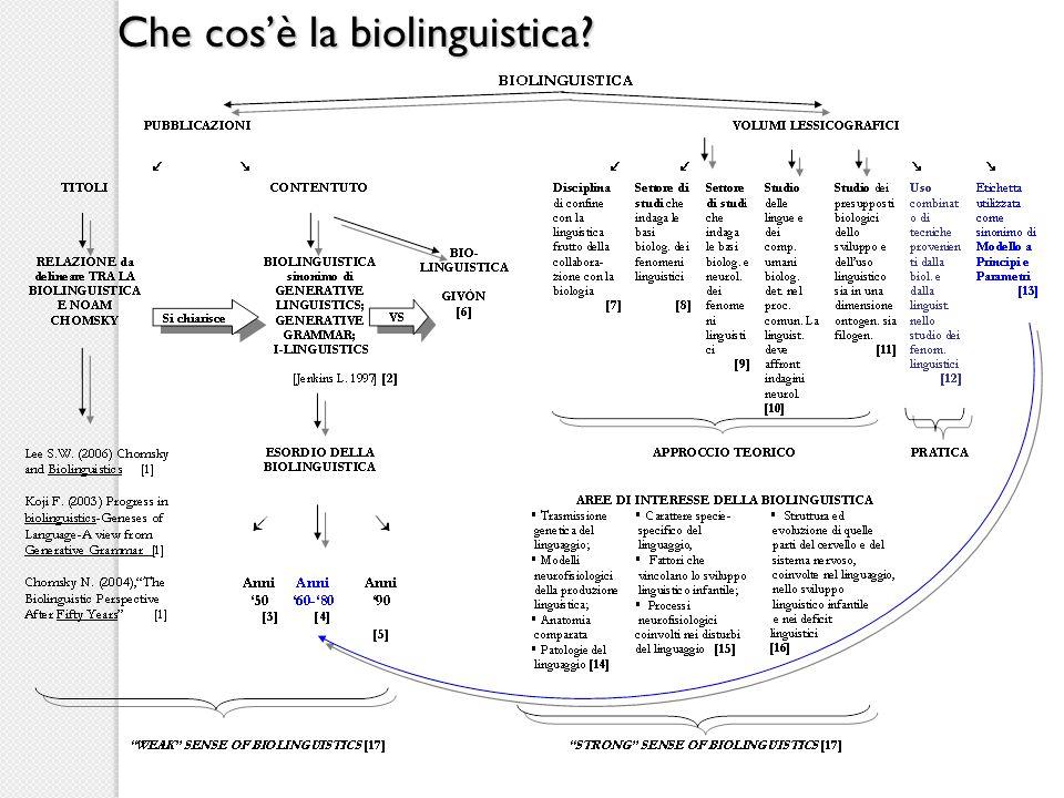 Interrogativi della ricerca biolinguistica What constitutes knowledge of language.