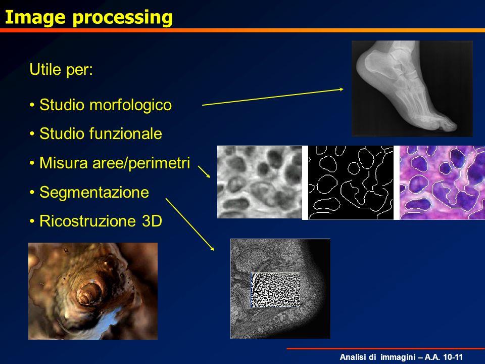Analisi di immagini – A.A. 10-11 Image processing Utile per: Studio morfologico Studio funzionale Misura aree/perimetri Segmentazione Ricostruzione 3D