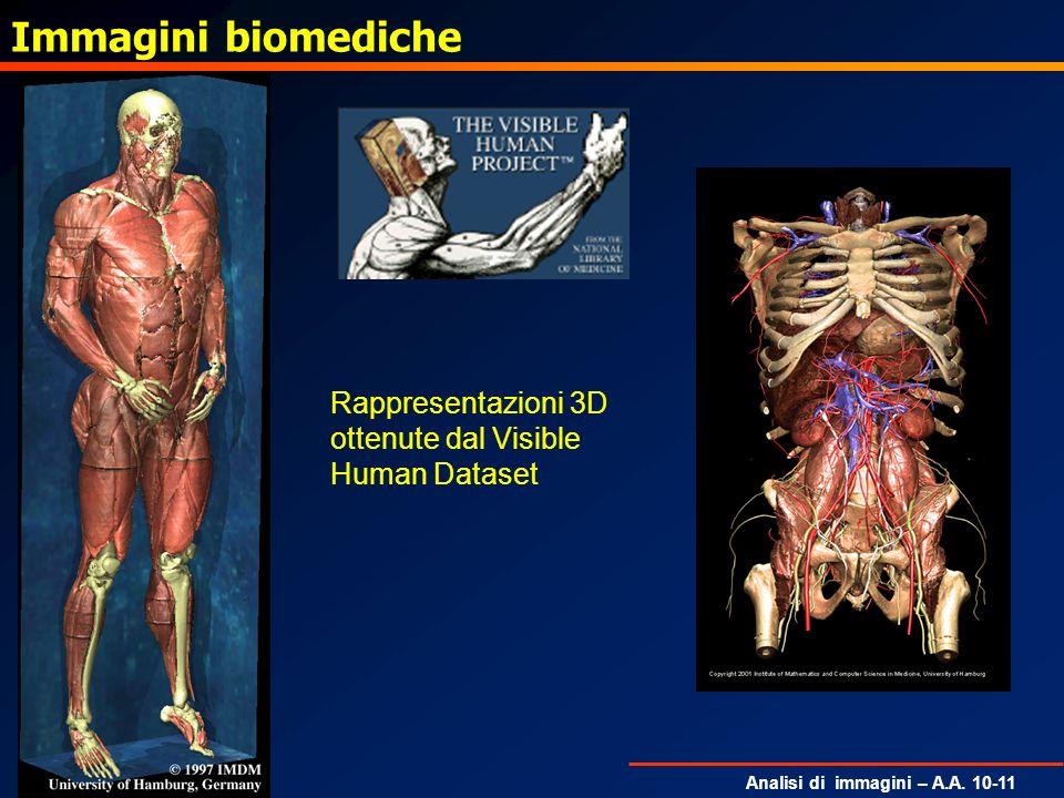Analisi di immagini – A.A. 10-11 Immagini biomediche Rappresentazioni 3D ottenute dal Visible Human Dataset