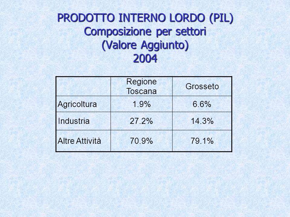 PRODOTTO INTERNO LORDO (PIL) Composizione per settori (Valore Aggiunto) 2004 Regione Toscana Grosseto Agricoltura1.9%6.6% Industria27.2%14.3% Altre Attività70.9%79.1%