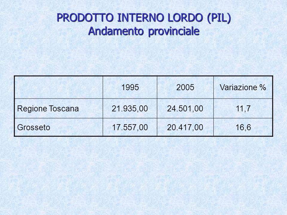 PRODOTTO INTERNO LORDO (PIL) Andamento provinciale 19952005Variazione % Regione Toscana21.935,0024.501,0011,7 Grosseto17.557,0020.417,0016,6