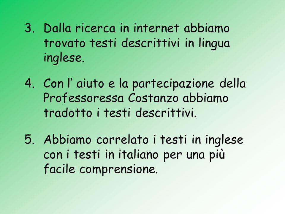 3.Dalla ricerca in internet abbiamo trovato testi descrittivi in lingua inglese. 4.Con l aiuto e la partecipazione della Professoressa Costanzo abbiam