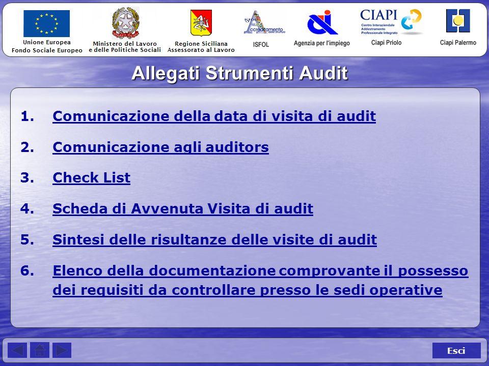 Allegati Strumenti Audit Esci 1.