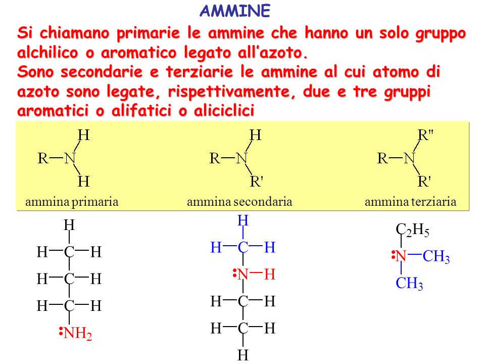 CH H H NH 2 metanammina amminometano metilammina CH C H NH 2 H H H etanammina amminoetano etilammina CH C H NH 2 H C H H H H 1-propanammina 1-amminopropano 1-propilammina CH C H H NH 2 C H H H H 2-propanammina 2-amminopropano 2-propilammina CH H H N CH C H H H H H N-metil-etanammina N-metil-amminoetano metil etil ammina N C 2 H 5 CH 3 CH 3 N,N-dimetil-etanammina N,N-dimetil-amminoetano dimetil etil ammina H H H H HH H N H H H H H CH 3 N-metil-cicloesanammina N-metil-amminocicloesano dimetil cicloesil ammina Ammine alifatiche