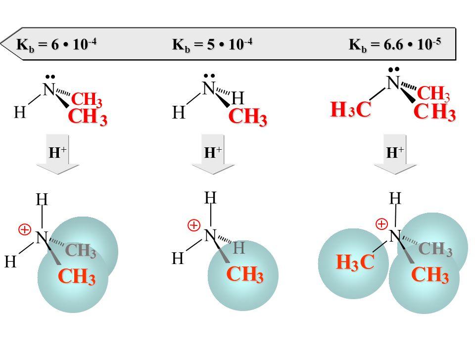 H N H CH 3 H N H CH 3 H N H 3 C CH 3 H CH 3 CH 3 N H CH 3 CH 3 N H CH 3 H N H 3 C CH 3 CH 3 H+H+H+H+ H+H+H+H+ H+H+H+H+ K b = 6 10 -4 K b = 5 10 -4 K b