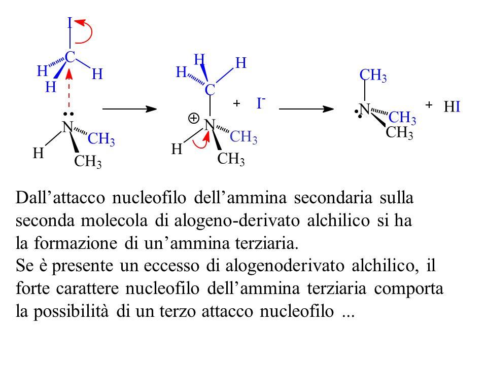 Dallattacco nucleofilo dellammina secondaria sulla seconda molecola di alogeno-derivato alchilico si ha la formazione di unammina terziaria. Se è pres