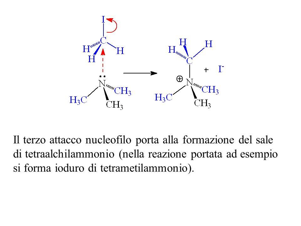 Il terzo attacco nucleofilo porta alla formazione del sale di tetraalchilammonio (nella reazione portata ad esempio si forma ioduro di tetrametilammon