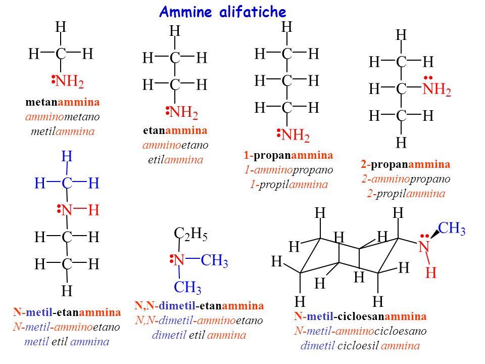 NH 2 benzenammina amminobenzene fenilammina anilina NH CH 3 N-metilbenzenammina N-metil-amminobenzene metilfenilammina N-metil-anilina NCH 3 CCH 3 H 3 C CH 3 N-metil-N-2(2-metilpropil)benzenammina N-metil-N-tert-butil-amminobenzene metil-tert-butil-fenilammina N-metil-N-isopropil-anilina Ammine aromatiche