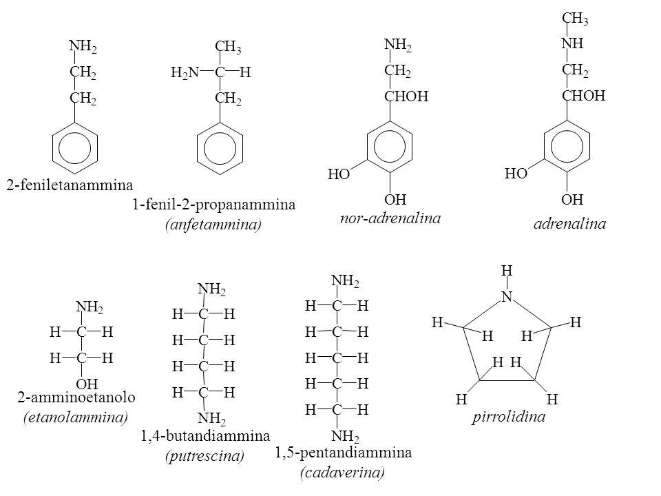 OH HO CHOH CH 2 NH 2 OH HO CHOH CH 2 NH CH 3 CH 2 CH 2 NH 2 CH 2 CHH 2 N CH 3 2-feniletanammina 1-fenil-2-propanammina (anfetammina) nor-adrenalina ad
