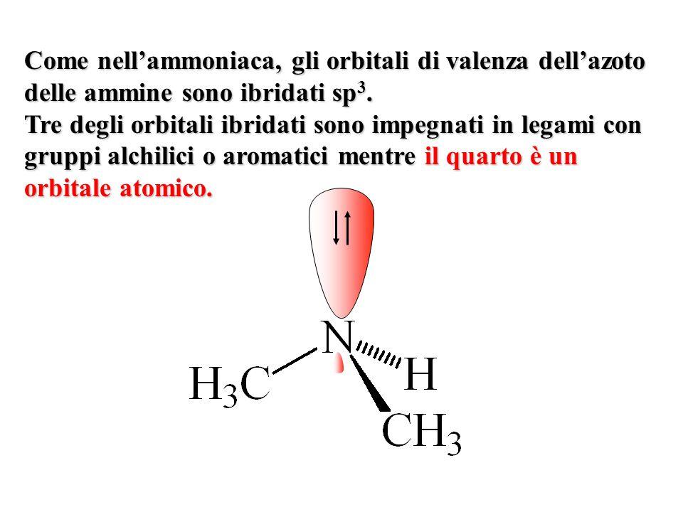 Come nellammoniaca, gli orbitali di valenza dellazoto delle ammine sono ibridati sp 3. Tre degli orbitali ibridati sono impegnati in legami con gruppi