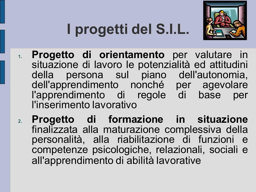 I progetti del S.I.L. 1. Progetto di orientamento per valutare in situazione di lavoro le potenzialità ed attitudini della persona sul piano dell'auto