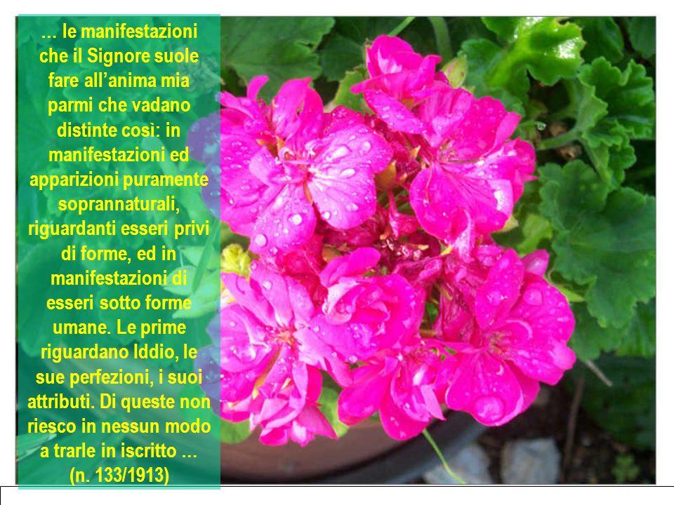 … le manifestazioni che il Signore suole fare allanima mia parmi che vadano distinte così: in manifestazioni ed apparizioni puramente soprannaturali,