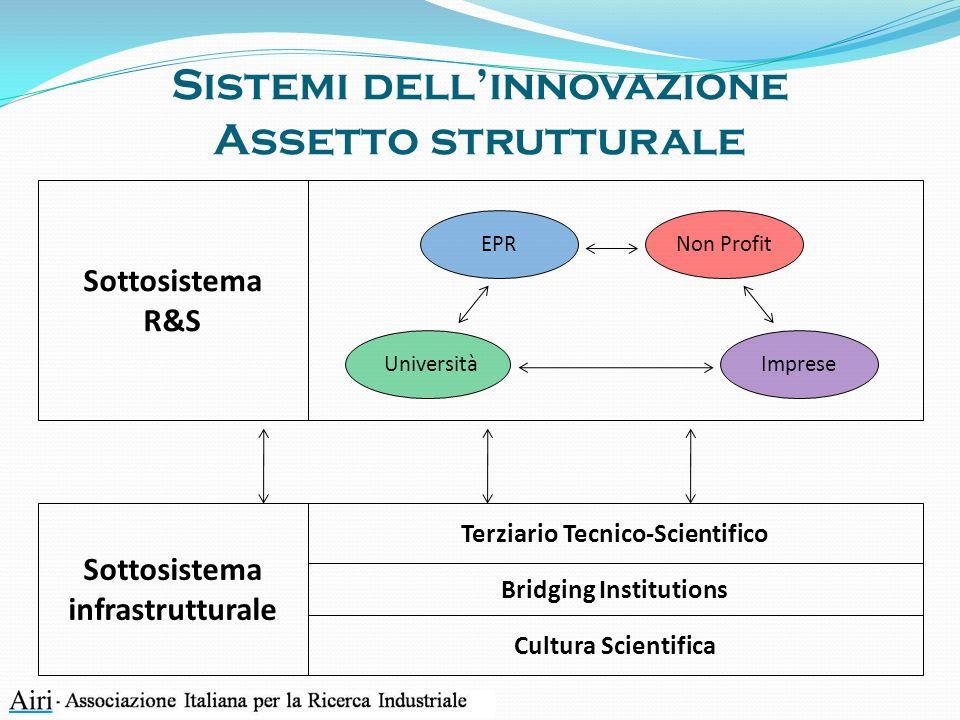 Sottosistema infrastrutturale Sistemi dellinnovazione Assetto strutturale Cultura Scientifica Sottosistema R&S Terziario Tecnico-Scientifico Bridging Institutions Imprese Non ProfitEPR Università