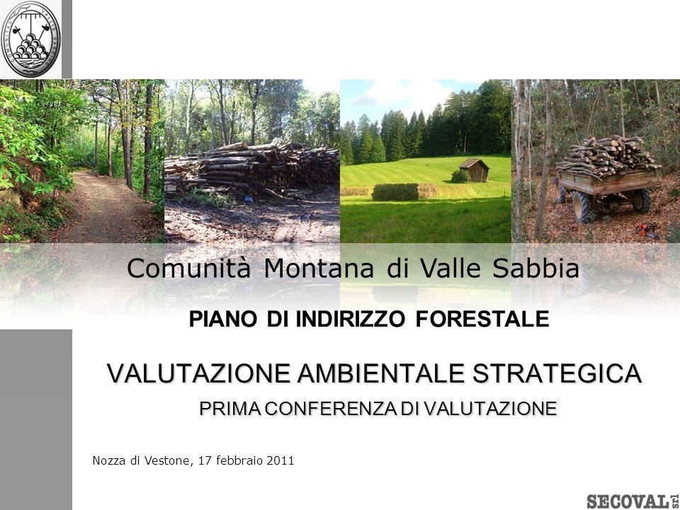 Rapporto con i Siti Natura 2000 AMBITO DI INFLUENZA COMPRESI: SIC Altopiano di Cariadeghe (Serle) SIC Sorgente Funtanì (Vobarno) SIC Valvestino (Capovalle) ZPS Val Caffaro (Bagolino, coincidente con parte del Demanio Regionale) CONFINANTI: ZPS Alto Garda Bresciano SIC Pascoli di Crocedomini-Alta Val Caffaro SIC e ZPS Lago dIdro (P.A.