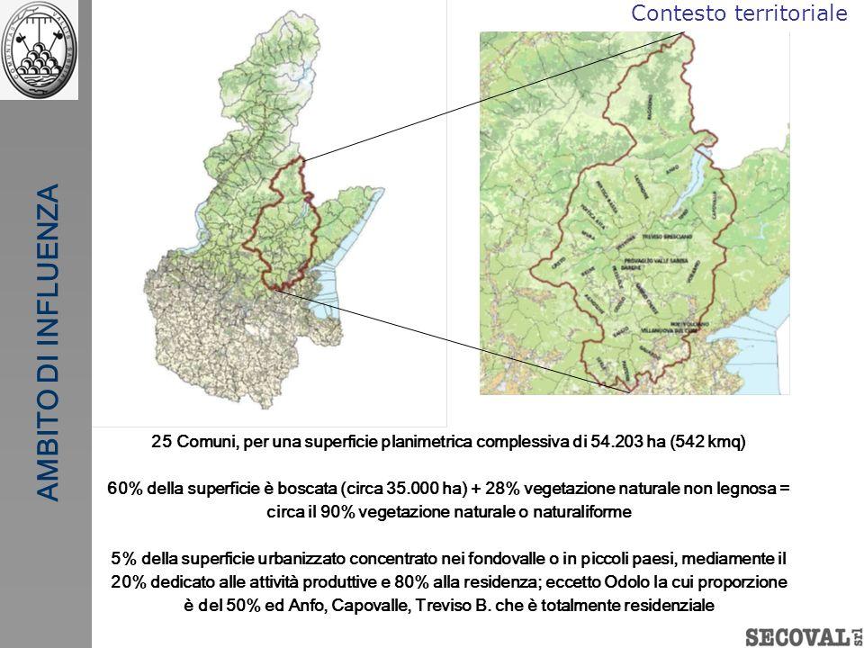 AMBITO DI INFLUENZA 25 Comuni, per una superficie planimetrica complessiva di 54.203 ha (542 kmq) 60% della superficie è boscata (circa 35.000 ha) + 2