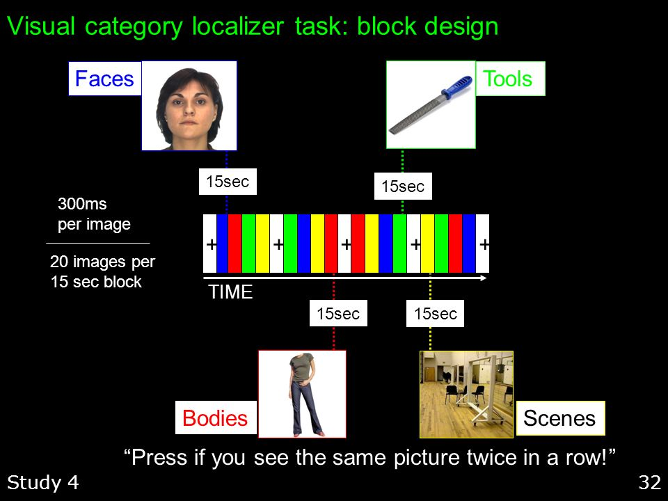 32 Visual category localizer task: block design Study 4 Press if you see the same picture twice in a row! 20 images per 15 sec block 300ms per image F