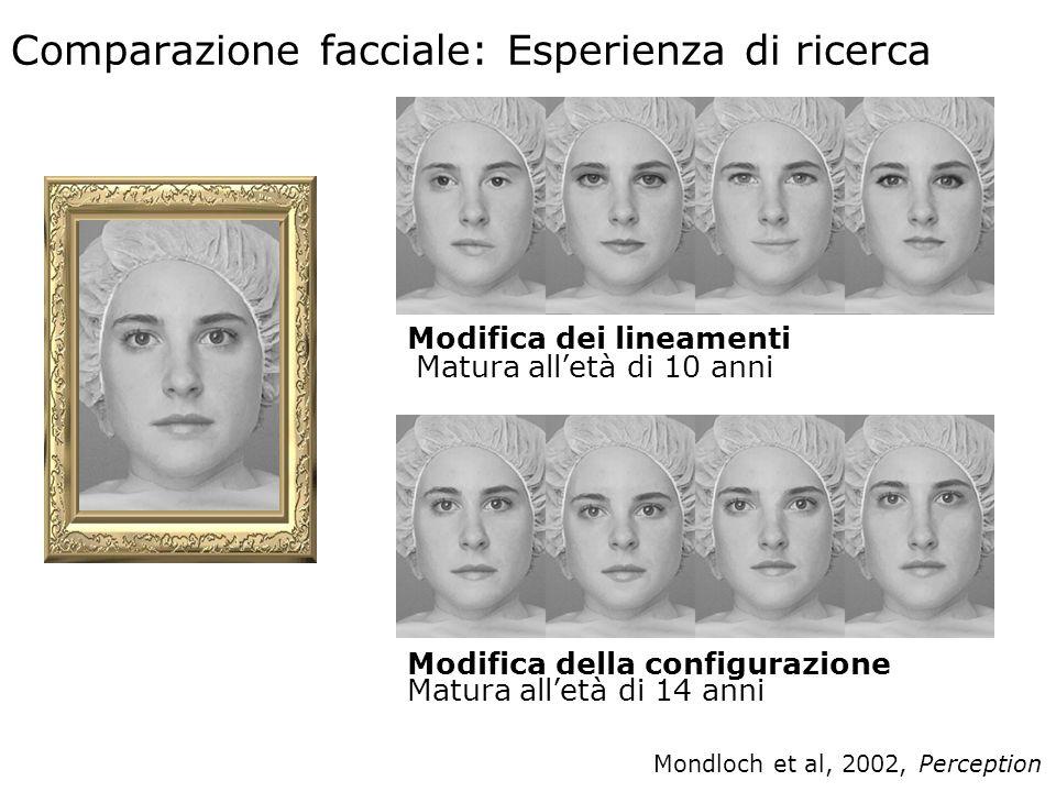 5 Comparazione facciale: Esperienza di ricerca Mondloch et al, 2002, Perception Modifica dei lineamenti Matura alletà di 10 anni Modifica della configurazione Matura alletà di 14 anni Study 5