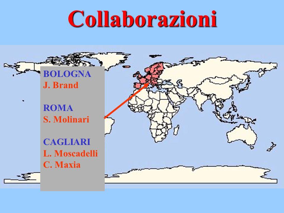 Collaborazioni BOLOGNA J. Brand ROMA S. Molinari CAGLIARI L. Moscadelli C. Maxia