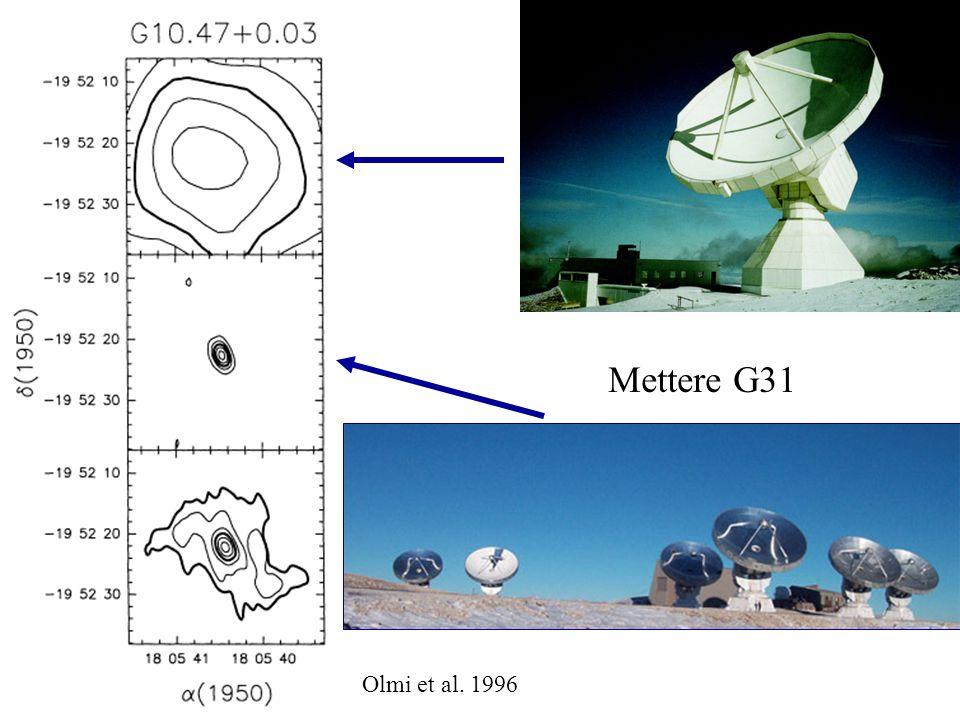 Olmi et al. 1996 Mettere G31