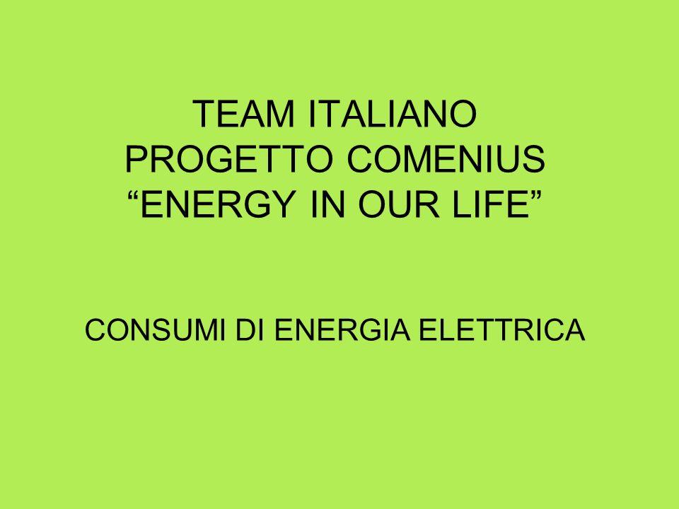 TEAM ITALIANO PROGETTO COMENIUS ENERGY IN OUR LIFE CONSUMI DI ENERGIA ELETTRICA