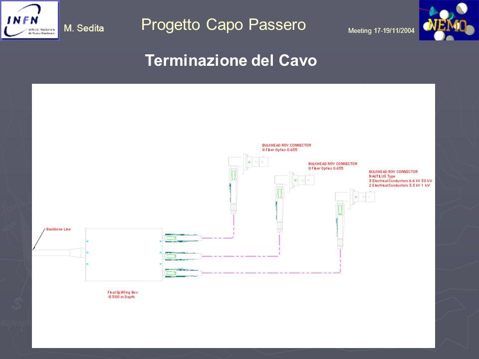 M. Sedita Progetto Capo Passero Meeting 17-19/11/2004 Terminazione del Cavo