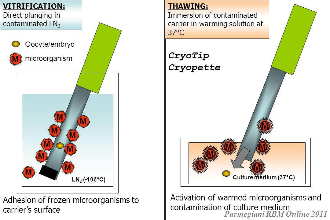Hermetical goblets for cryostorage of human vitrified specimens – Parmegiani et Rienzi, Hum Reprod 2011
