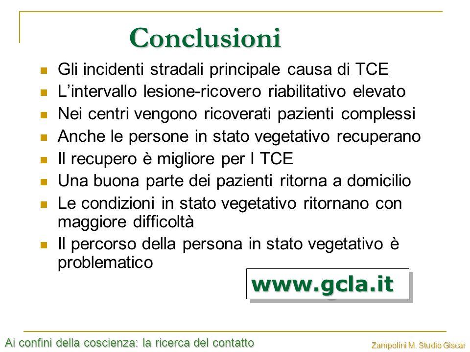 Ai confini della coscienza: la ricerca del contatto Zampolini M. Studio Giscar Conclusioni Gli incidenti stradali principale causa di TCE Lintervallo