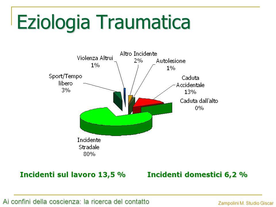 Ai confini della coscienza: la ricerca del contatto Zampolini M. Studio Giscar Eziologia Traumatica Incidenti domestici 6,2 % Incidenti sul lavoro 13,
