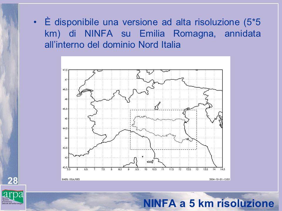 28 NINFA a 5 km risoluzione È disponibile una versione ad alta risoluzione (5*5 km) di NINFA su Emilia Romagna, annidata allinterno del dominio Nord I