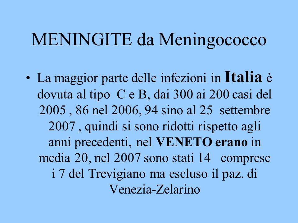 MENINGITE da Meningococco La maggior parte delle infezioni in Italia è dovuta al tipo C e B, dai 300 ai 200 casi del 2005, 86 nel 2006, 94 sino al 25