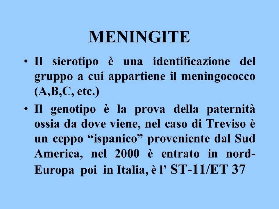 MENINGITE Il sierotipo è una identificazione del gruppo a cui appartiene il meningococco (A,B,C, etc.) Il genotipo è la prova della paternità ossia da