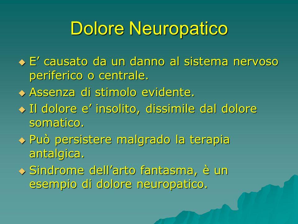 Dolore Neuropatico E causato da un danno al sistema nervoso periferico o centrale. E causato da un danno al sistema nervoso periferico o centrale. Ass