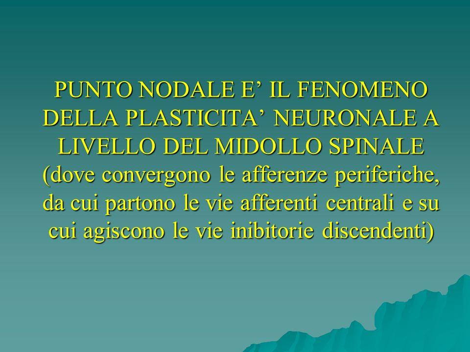 PUNTO NODALE E IL FENOMENO DELLA PLASTICITA NEURONALE A LIVELLO DEL MIDOLLO SPINALE (dove convergono le afferenze periferiche, da cui partono le vie a