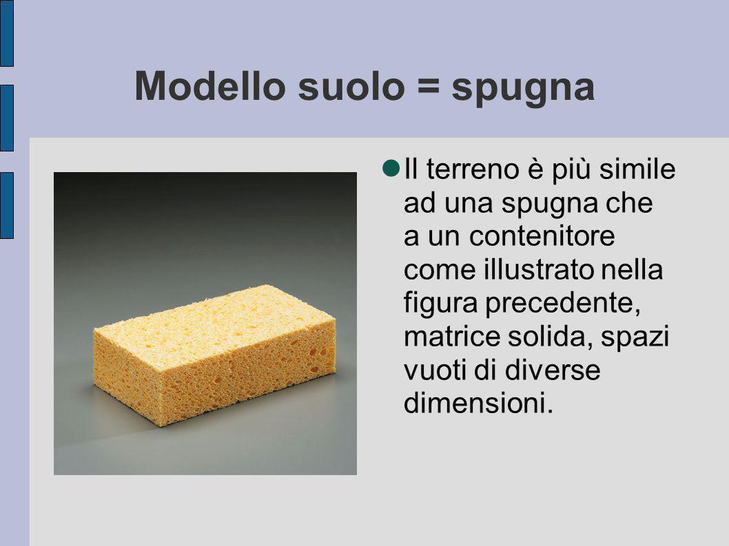 Modello suolo = spugna Il terreno è più simile ad una spugna che a un contenitore come illustrato nella figura precedente, matrice solida, spazi vuoti di diverse dimensioni.