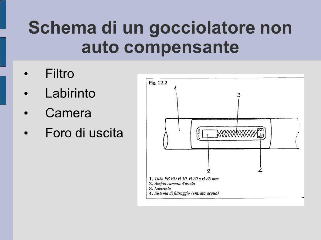 Schema di un gocciolatore non auto compensante Filtro Labirinto Camera Foro di uscita