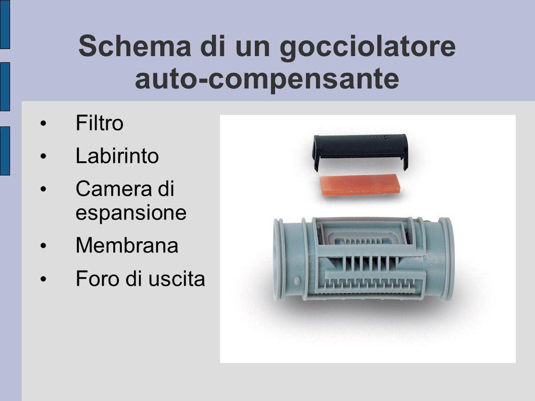 Schema di un gocciolatore auto-compensante Filtro Labirinto Camera di espansione Membrana Foro di uscita